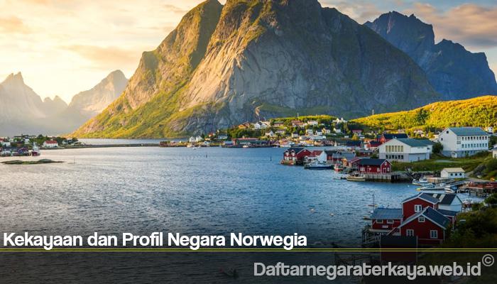 Kekayaan dan Profil Negara Norwegia