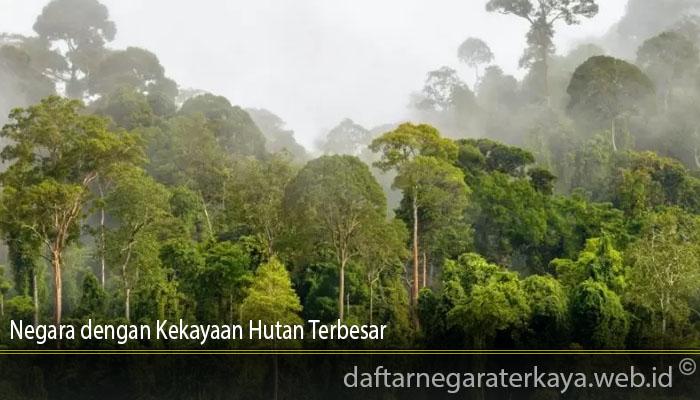 Negara dengan Kekayaan Hutan Terbesar